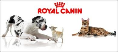 Royal Canin - Bichons Havanais